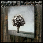 "IG-0010 - Instagram Special - Original Oil Painting - 24x24 Inch ""Shadow Tree"""