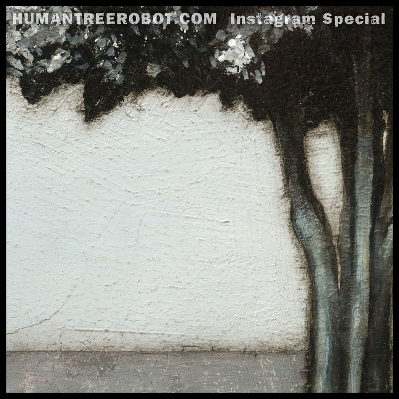 "Instagram Special - Original Oil Painting - 24x24 Inch ""Shadow Tree"""