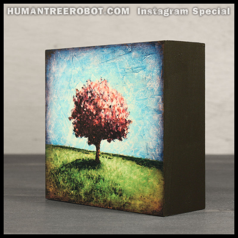 Instagram Special - 4x4 Wood Panel Print - Hilltop Tree, Rose