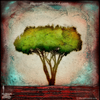 0070 Wood Panel Square - Horizon Landscape - Neighborhood Tree