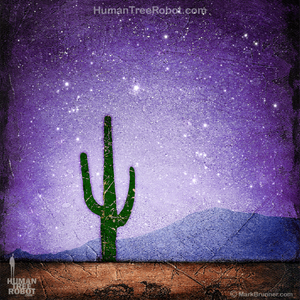 0076 Wood Panel Square - Horizon - Desert Cactus - Purple