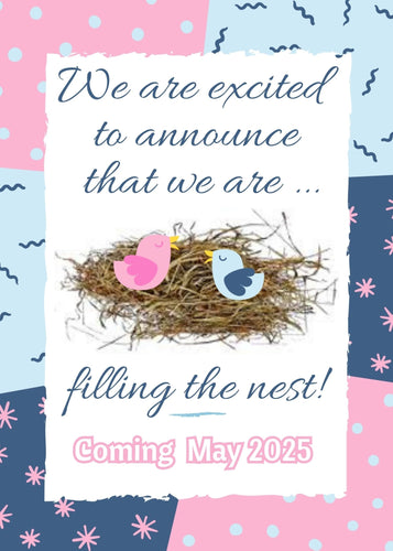 Bird's Nest Pregnancy Announcement - Custom Design Party Invites and Personalized Announcements