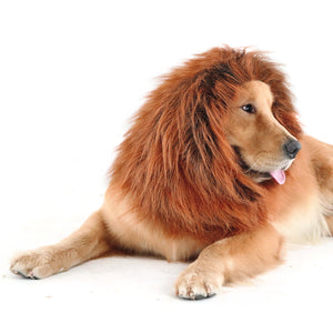 CPPSLEE Halloween Lion Mane Wig Costume - Make Your Dog Lion King - Adjustable Washable Comfortable Fancy Lion Hair Dog Clothes Dress for Halloween