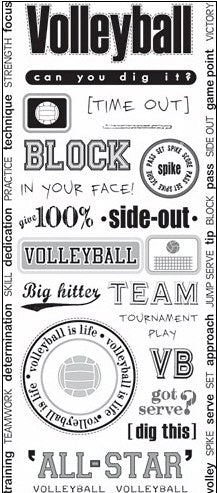Art Warehouse Volleyball Stickers