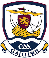 Galway Camogie GPS player tracking review - SPT