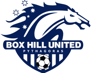 box hill united soccer