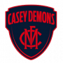 Sports Performance Tracking - Casey Demons Football
