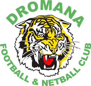 Dromana Football Club Testimonial SPT GPS