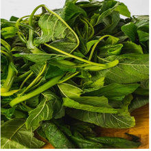 Load image into Gallery viewer, 🌿CALLALOO LEAVES (Country Origin. Nigeria / Caribbean)