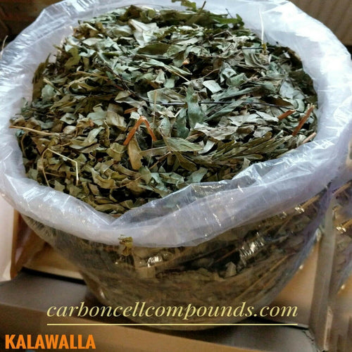 🌿KALAWALLA LEAVES (Country Origin. Jamaica) Next Wild-Picking Availability - 14 July 2020