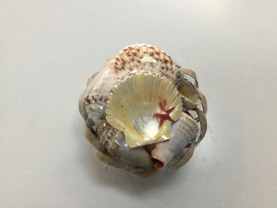 Shells - Small basket