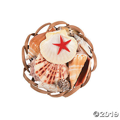 Basket of Sea Shell Assortment - Scallop