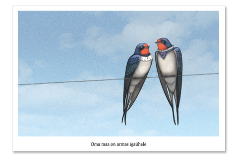 "Postcard ""Everybody loves his homeland"" (Swallows)"