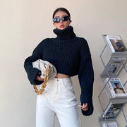 OH Ribbed Cropped Turtleneck - OH 2X Asia's Trending Streetwear OH2X
