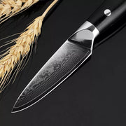 "Damascus kitchen knife Sets 5""+3.5"" Inch Paring 2Pcs of 67 layers Japan VG10 Damascus steel chef knife"