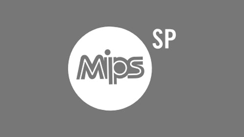 MIPS Sphere Protection System