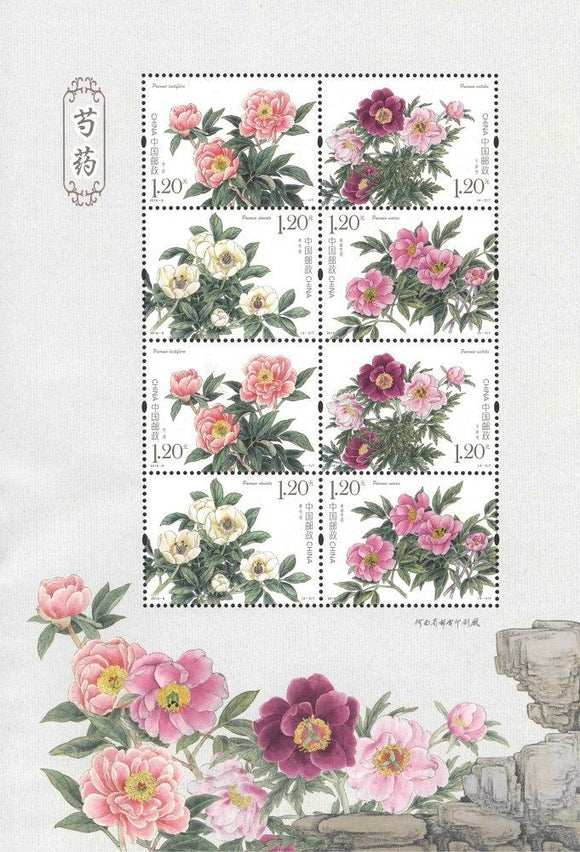 PK2019-09 Chinese Herbaceous Peony  Sheetlet