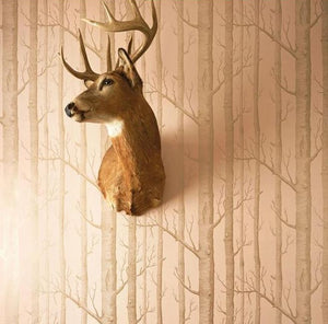 Woods - Cole & Sons Whimsical Collection