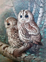 Load image into Gallery viewer, Two Owls DIY Diamond Painting Kit