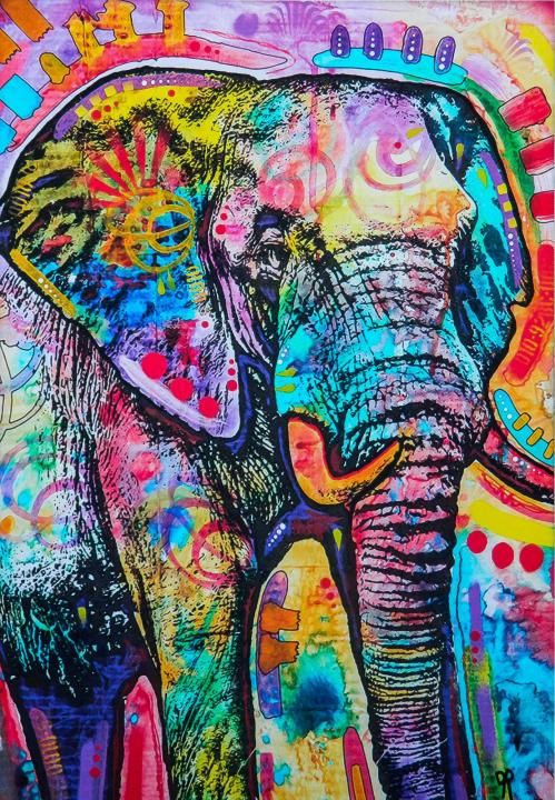 Colorful Elephant DIY Diamond Painting Kit