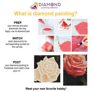 Custom Diamond Painting Kit - Full Drill