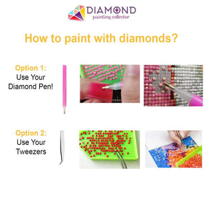 5pcs Red Flowers DIY Diamond Painting Kit