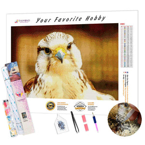 Attentive Falcon DIY Diamond Painting Kit