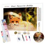Load image into Gallery viewer, Attentive Fox DIY Diamond Painting Kit