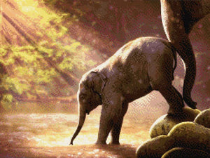 Baby Elephant by the Water DIY Diamond Painting Kit