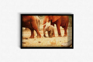 Baby Elephant with Mom DIY Diamond Painting Kit