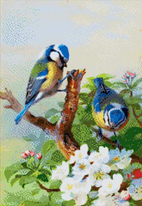 Beautiful Birds DIY Diamond Painting Kit