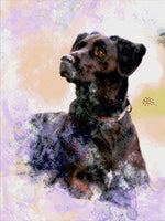 Load image into Gallery viewer, Black Labrador DIY Diamond Painting Kit