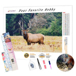 Load image into Gallery viewer, California Moose DIY Diamond Painting Kit