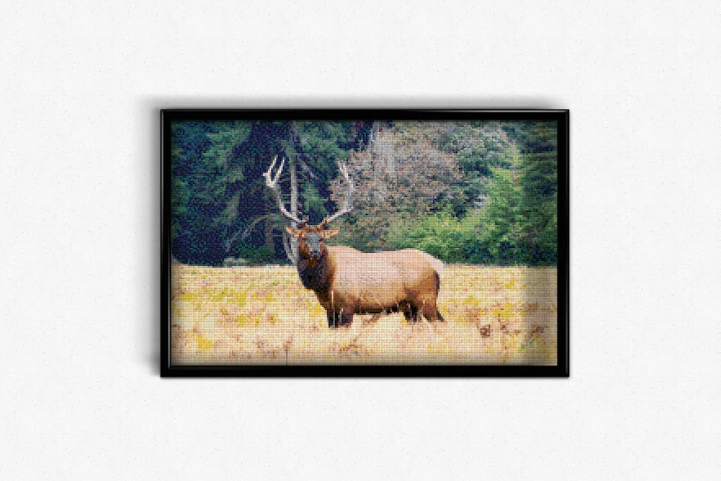 California Moose DIY Diamond Painting Kit