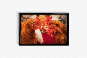 Chicken at the Fair DIY Diamond Painting Kit