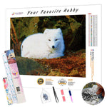 Load image into Gallery viewer, Cute Arctic Fox DIY Diamond Painting Kit