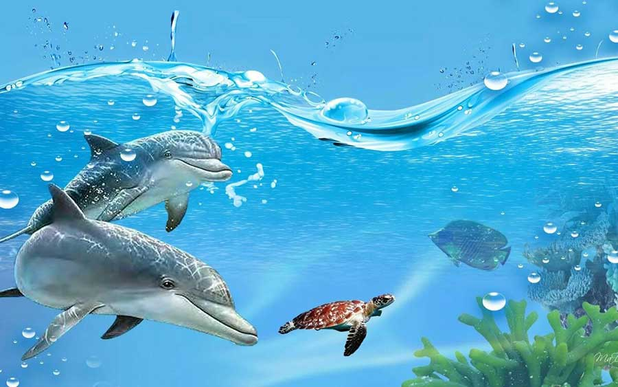 Dolphins in the Blue Lagoon DIY Diamond Painting Kit