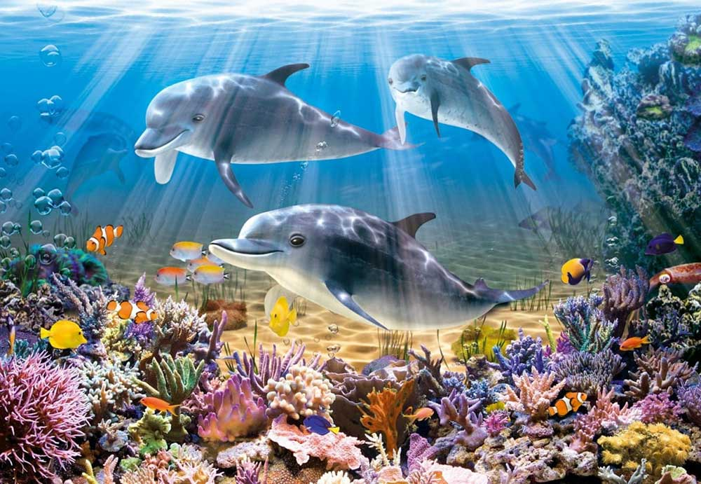 Dolphins in the Rays of the Sun DIY Diamond Painting Kit