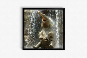 Elephant under the Waterfall DIY Diamond Painting Kit