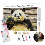 Load image into Gallery viewer, Panda Eats Bamboo DIY Diamond Painting Kit