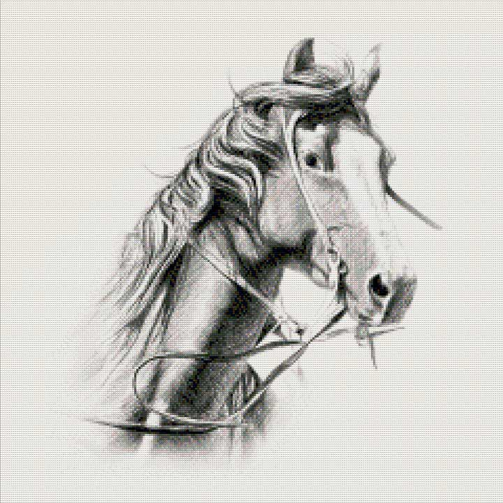 Portrait of a Horse DIY Diamond Painting Kit