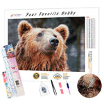 Load image into Gallery viewer, Proud Bear DIY Diamond Painting Kit