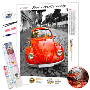 Red Bug DIY Diamond Painting Kit