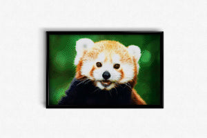 Red Panda DIY Diamond Painting Kit