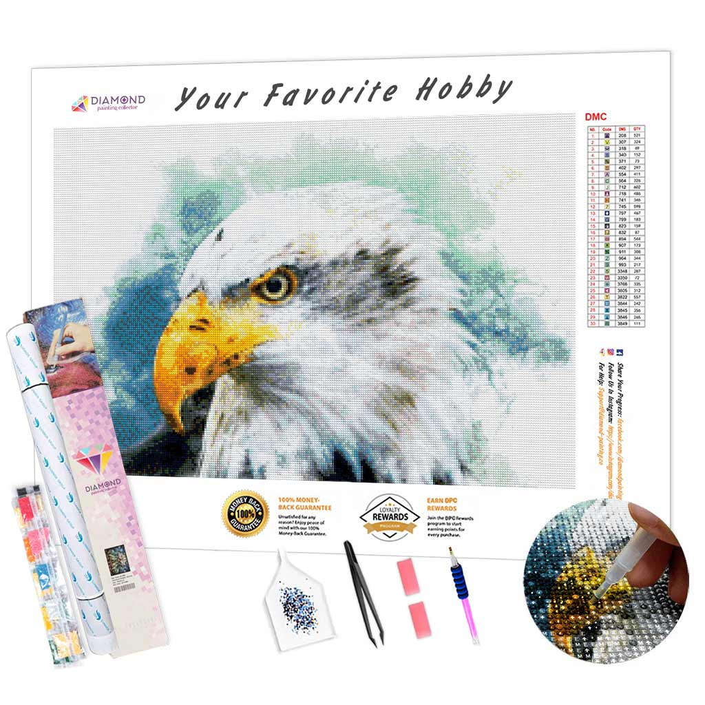 Sad Eagle DIY Diamond Painting Kit