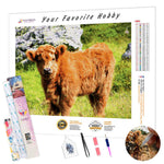 Load image into Gallery viewer, Shaggy Calf DIY Diamond Painting Kit