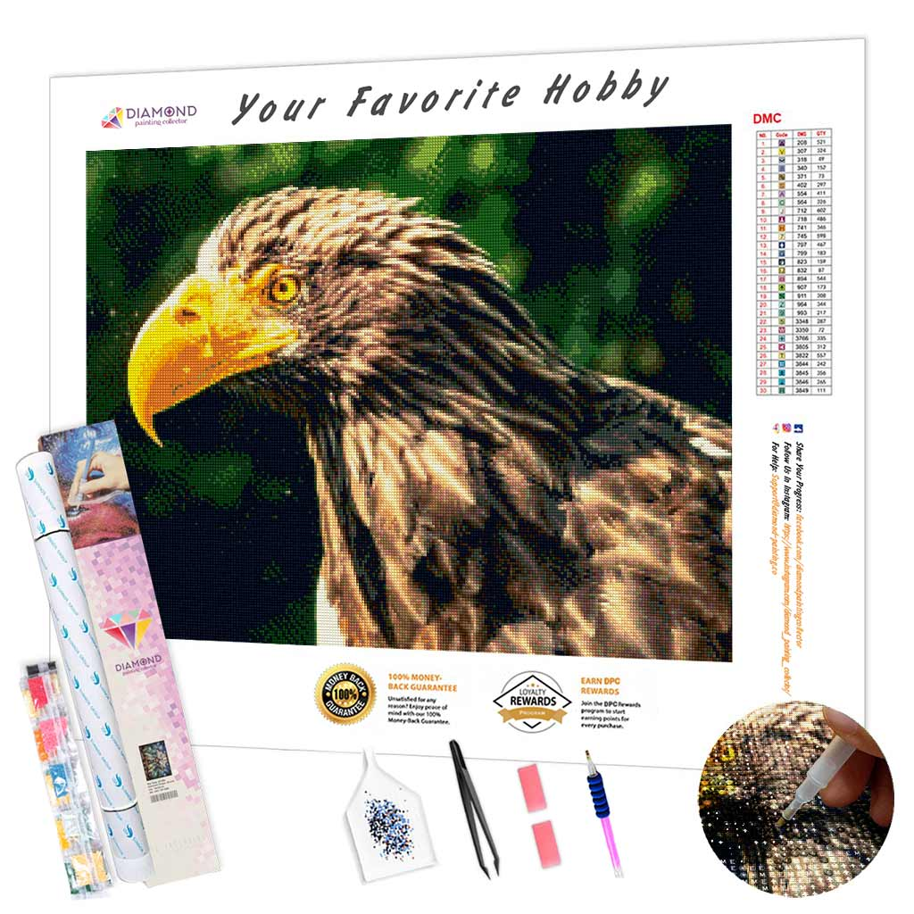 Steller's Sea Eagle DIY Diamond Painting Kit