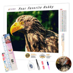 Load image into Gallery viewer, Steller's Sea Eagle DIY Diamond Painting Kit