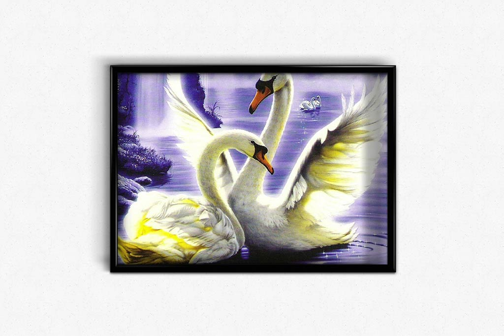 Swan Song DIY Diamond Painting Kit