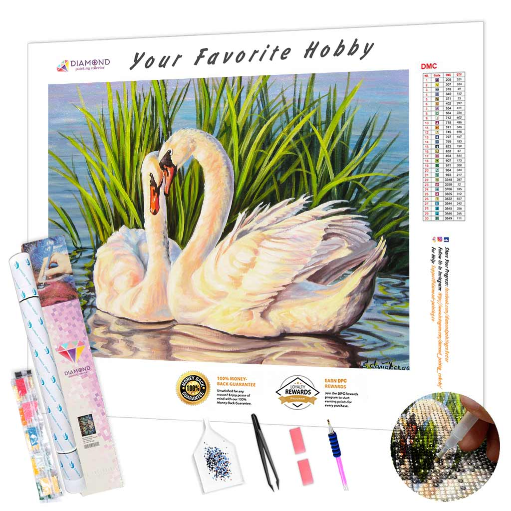 Swans by The Grass DIY Diamond Painting Kit